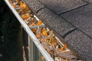 Clean Gutters for Fall