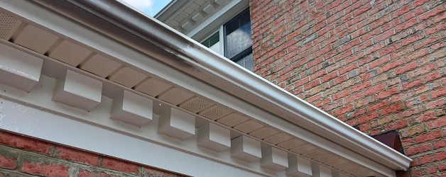Exterior Gutter Cleaning